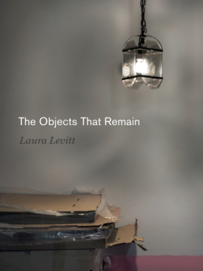 Book Cover - The Objects That Remain